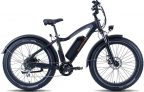 RadRover 5 Electric Fat Bike